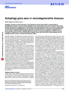 Autophagy gone awry in neurodegenerative diseases
