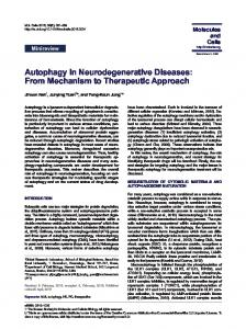 Autophagy in Neurodegenerative Diseases: From
