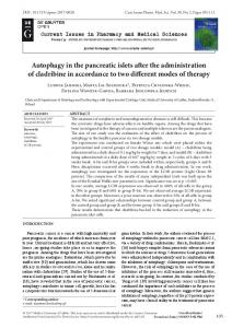 Autophagy in the pancreatic islets after the