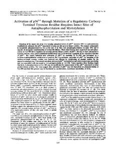Autophosphorylation and Myristylation - Molecular and Cellular Biology