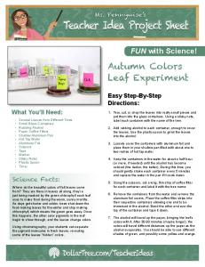 Autumn Colors Leaf Experiment - Dollar Tree, Inc.