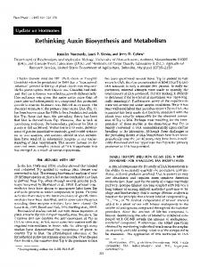 Auxin Biosynthesis and Metabolism - Plant Physiology