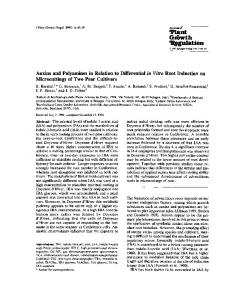 Auxins and polyamines in relation to differential - Springer Link