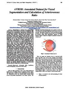 AVRDB: Annotated Dataset for Vessel Segmentation and Calculation ...