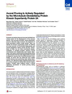 Axonal Pruning Is Actively Regulated by the Microtubule-Destabilizing ...