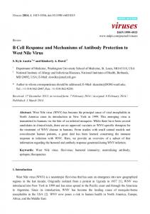 B Cell Response and Mechanisms of Antibody Protection to ... - MDPI