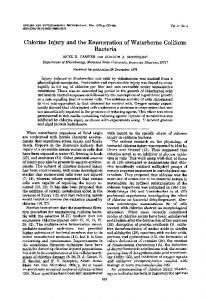 Bacteria - Applied and Environmental Microbiology