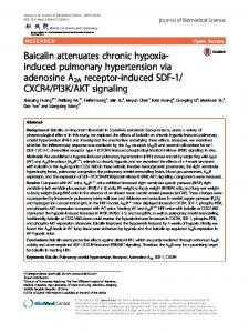 Baicalin attenuates chronic hypoxia-induced pulmonary hypertension ...