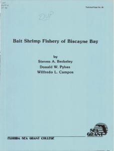 Bait Shrimp Fishery of Biscayne Bay - Aquatic Commons