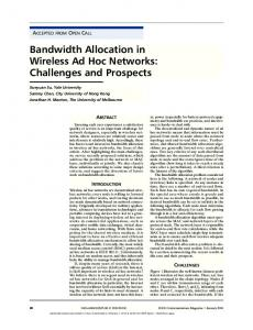 Bandwidth Allocation in Wireless Ad Hoc Networks - Department of ...