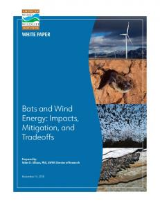 Bats and Wind Energy - American Wind Wildlife Institute