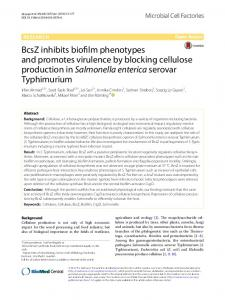 BcsZ inhibits biofilm phenotypes and promotes virulence by ... - Core