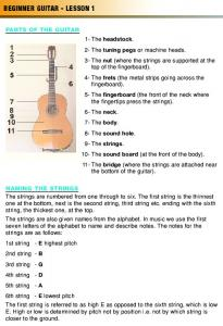 BEGINNER GUITAR - LESSON 1 - lessons by James