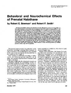 Behavioral and Neurochemical Effects of Prenatal Halothane