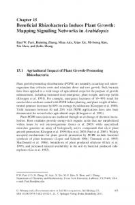 Beneficial Rhizobacteria Induce Plant Growth: Mapping ... - MyWeb
