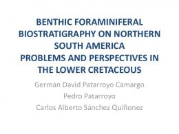 benthic foraminiferal biostratigraphy on northern ...
