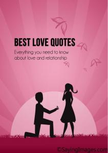 Best love quotes: Everything you need to know ... - Saying Images