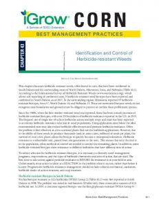 BEST MANAGEMENT PRACTICES Identification and ...