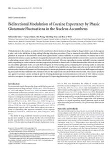 Bidirectional Modulation of Cocaine Expectancy by Phasic Glutamate ...