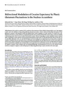 Bidirectional Modulation of Cocaine Expectancy by Phasic Glutamate