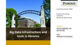 Big Data infrastructure and tools in libraries