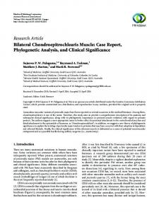 Bilateral Chondroepitrochlearis Muscle: Case Report, Phylogenetic ...