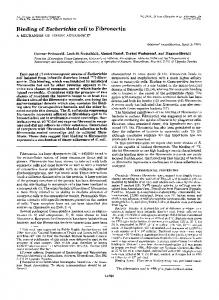 Binding of Escherichia coli to Fibronectin - The Journal of Biological ...