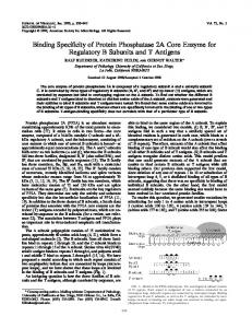 Binding Specificity of Protein Phosphatase 2A ... - Journal of Virology