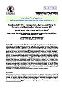 Biocatalysts Of Silver Nanoparticles Synthesized Using An