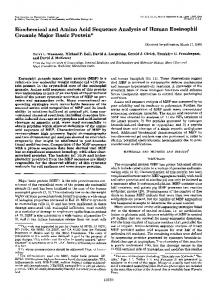 Biochemical and amino acid sequence analysis of human eosinophil ...
