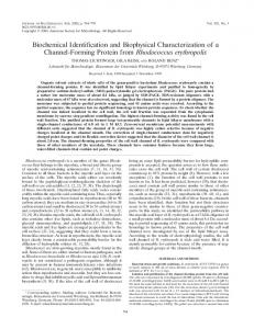 Biochemical Identification and Biophysical Characterization of a ...
