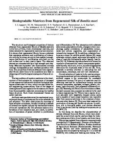 Biodegradable Matrices from Regenerated Silk of Bombix mori