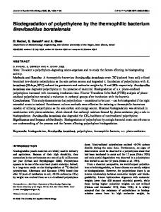Biodegradation of polyethylene by the ... - Wiley Online Library