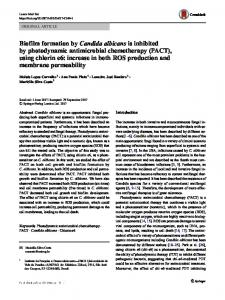 Biofilm formation by Candida albicans is inhibited by ...