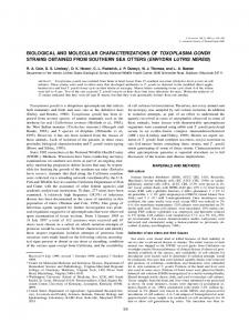 biological and molecular characterizations of toxoplasma gondii ...