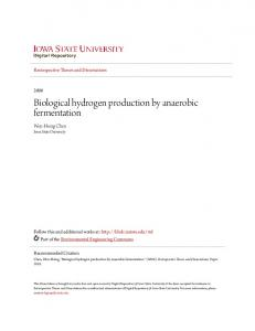 Biological hydrogen production by anaerobic ...