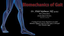 Biomechanics of normal Gait