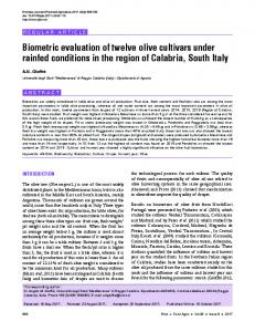 Biometric evaluation of twelve olive cultivars under rainfed conditions ...