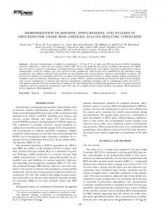 bioremediation of benzene, ethylbenzene, and