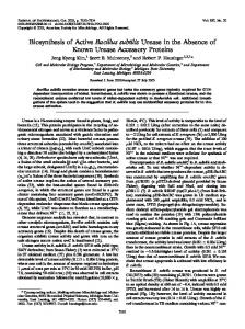 Biosynthesis of Active Bacillus subtilis Urease in the Absence of ...