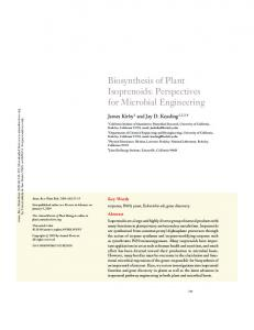 Biosynthesis of Plant Isoprenoids: Perspectives for ... - Stoa Social - USP