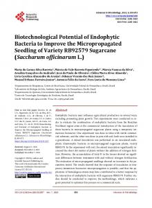 Biotechnological Potential of Endophytic Bacteria to