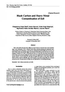 Black Carbon and Heavy Metal Contamination of Soil