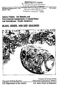 black, green, and red abalones - Aquatic Commons