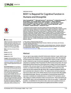 BOD1 Is Required for Cognitive Function in Humans and ... - PLOS