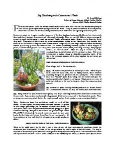 Bog Gardening with Carnivorous Plants - Extension Master ...