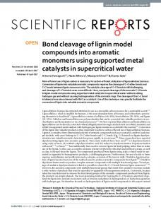 Bond cleavage of lignin model compounds into