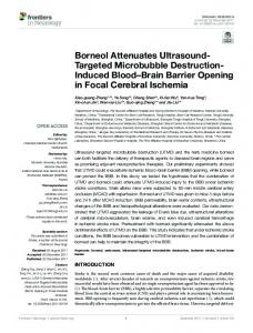 Borneol Attenuates Ultrasound-Targeted