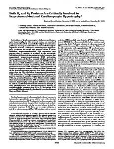 Both Gs and Gi Proteins Are Critically Involved in Isoproterenol ...