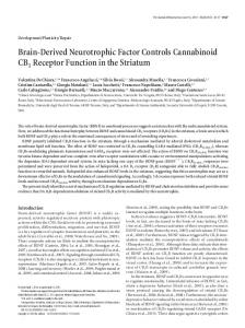 Brain-Derived Neurotrophic Factor Controls ... - Semantic Scholar
